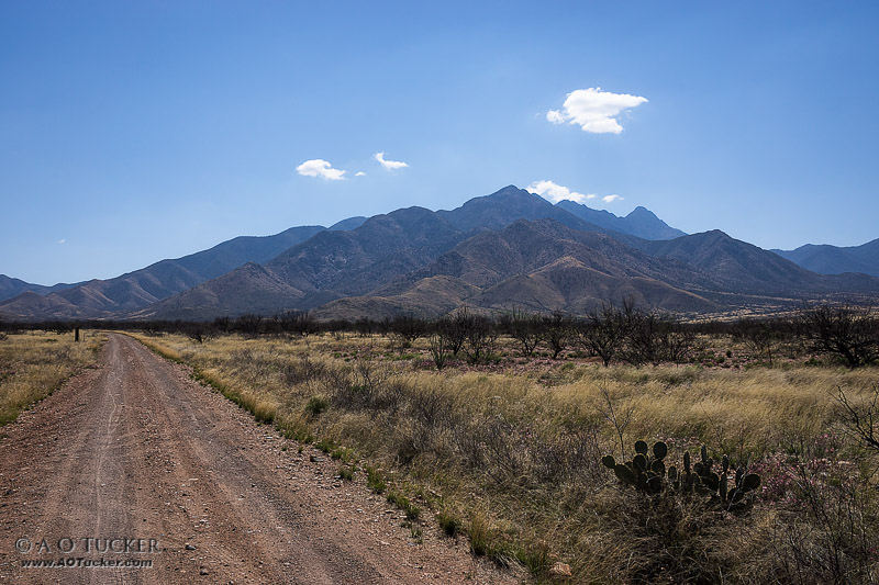 The Road To Santa Rita - Arizona Republic Weather Photo 03/17/2015 Santa Rita Mountains post