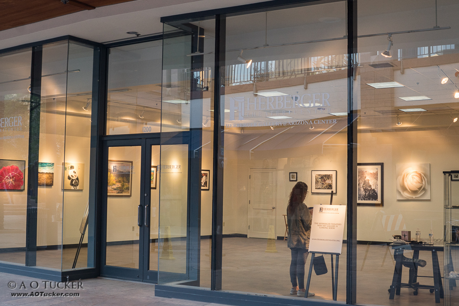Herberger Gallery at Arizona Center